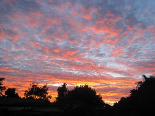 Streaky Orange Sunset Clouds
