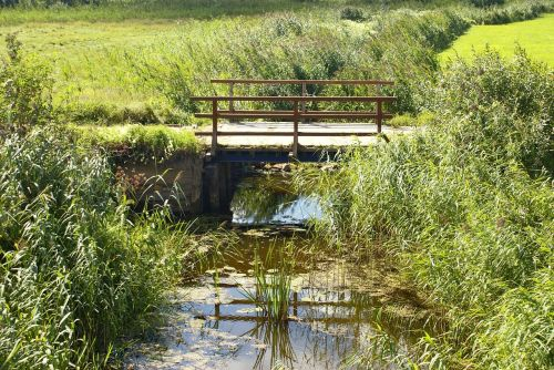 stream bridge meadow