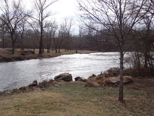 stream trees fall