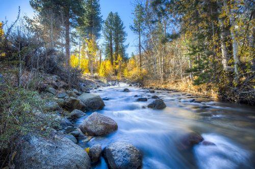 stream wilderness water