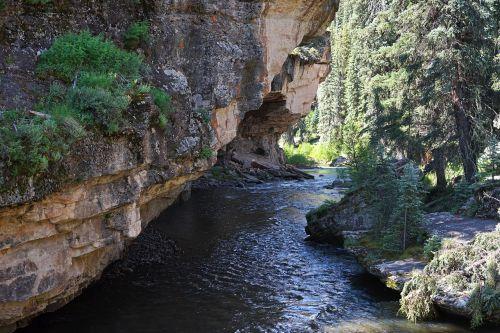 stream creek mountain stream