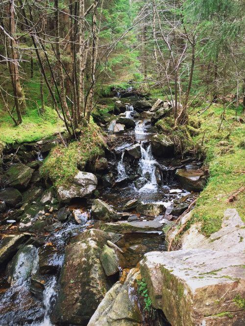 stream water river