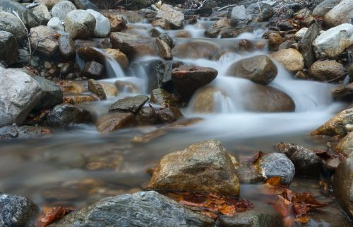 stream river water