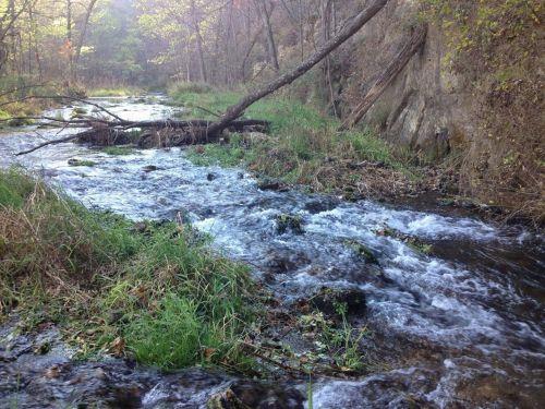Stream And Rapids