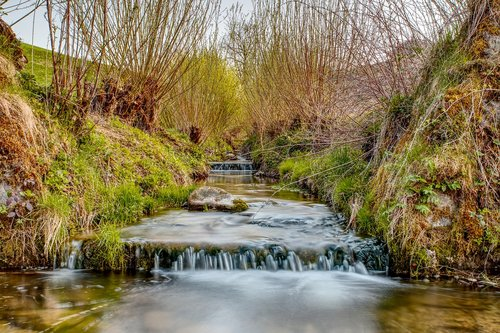stream bed  running water  embankment