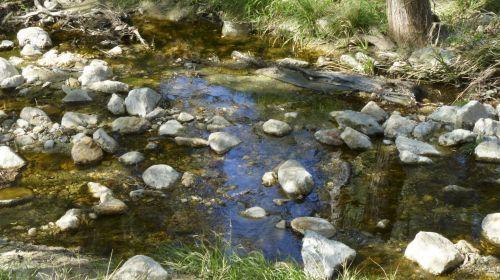 srautas, srautas, parkas, akmenys, uolingas, atspindys, vanduo, mėlynas, žalias, srautas parke