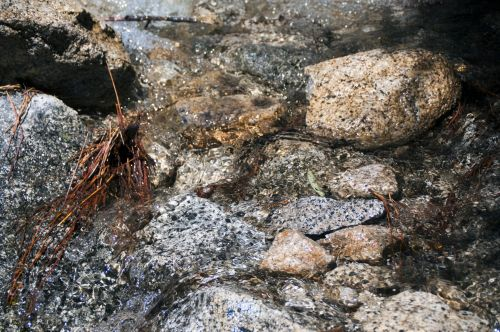 Rokas, akmenys, geologija, srautas, vanduo, lietus, viešasis & nbsp, domenas, Laisvas, srautas akmenų fonas