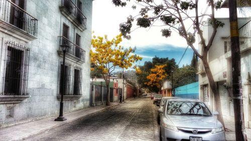 street oaxaca colonial