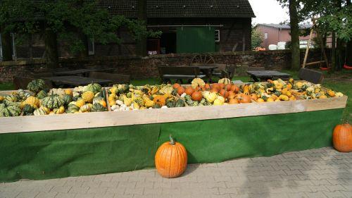 street vending street stall vegetable stand