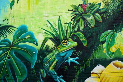 streetart darwin frog