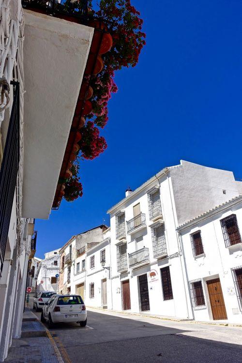 streetscape street white
