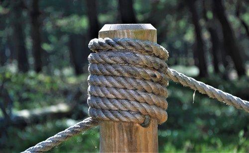 string  node  peg
