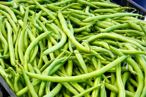 String Green Beans