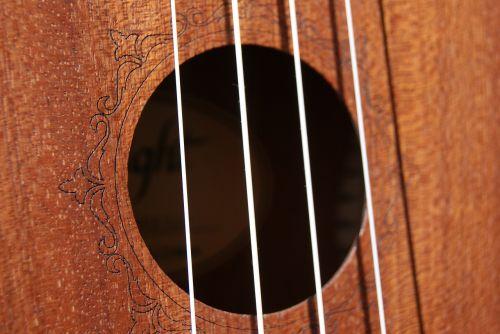 strings ukulele music
