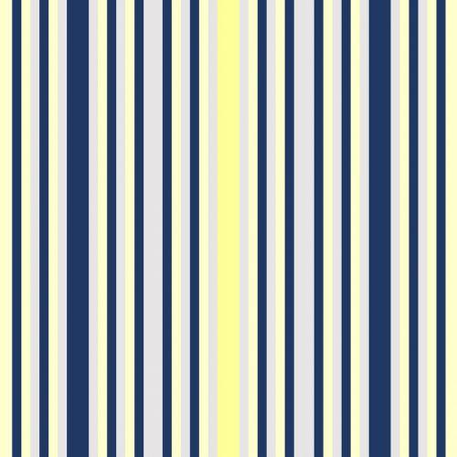 stripes vertical navy