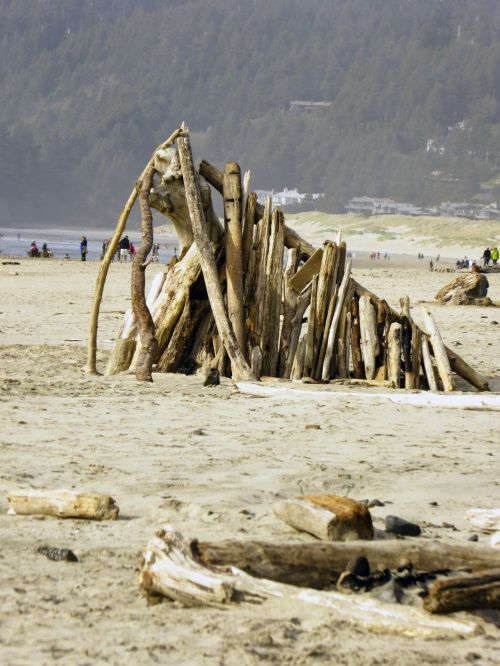 Structure Of Logs On Beach