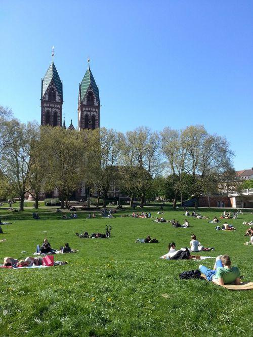 students sun lazing around