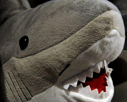 Stuffed Animal Shark