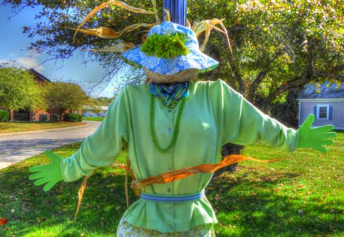 Stylish Scarecrow