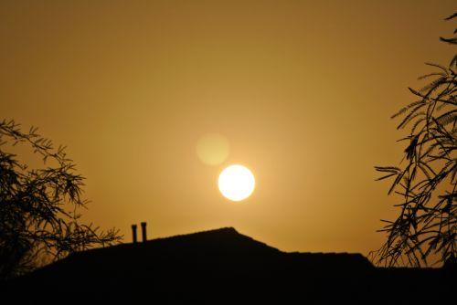 Suburbia Sunrise 105