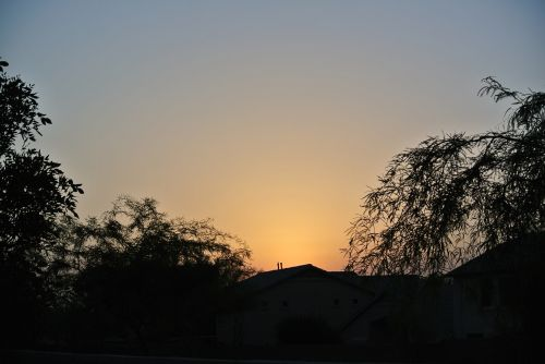 Suburbia Sunrise
