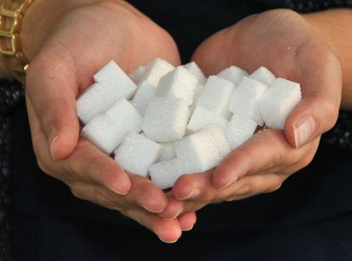 sugar cube sugar bake