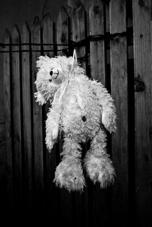 suicide bear cub depressed