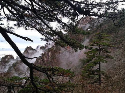 sulfuric acid pine valley