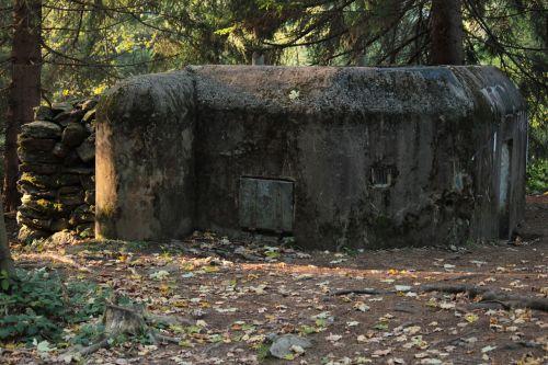 šumava bunker nature