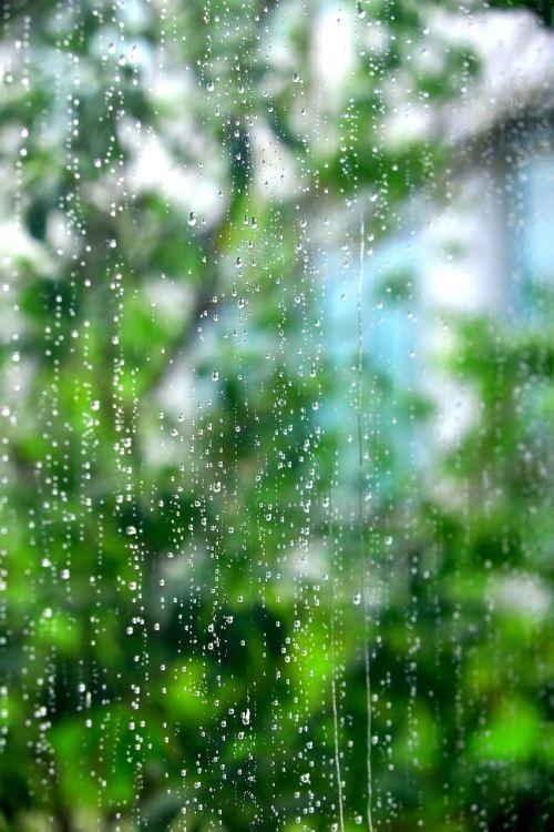 window trickle summer