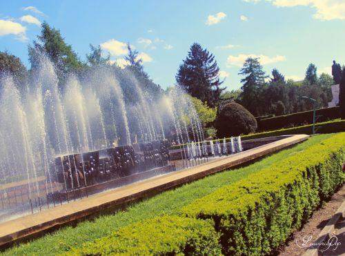 fontanas, vasara, saulė, parkas, sodas, vanduo, mėlynas, geltona, balta, vasara