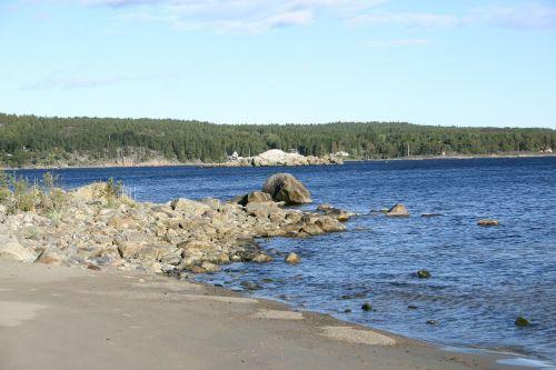 summer nature beach