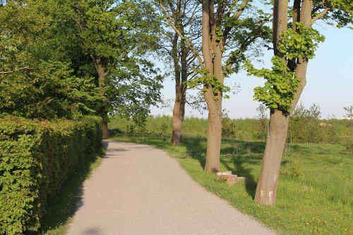 summer cozy small road