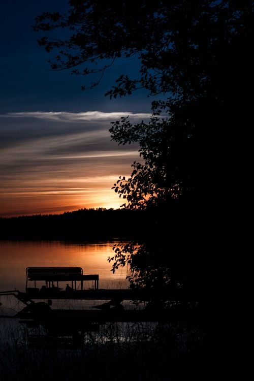 summer evening nature lake