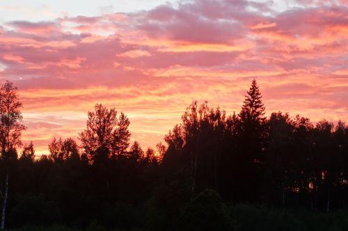 summer evening sunset himmel