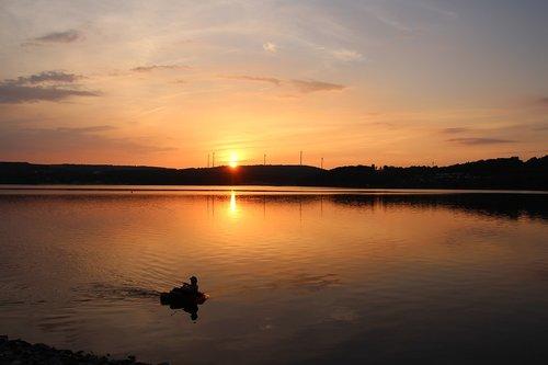 summer evening  sunset  lake