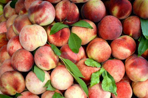 Summer Peaches (a)