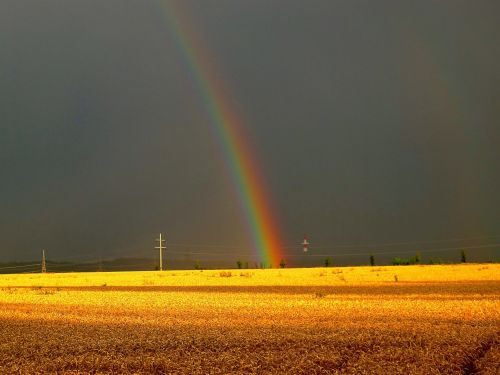 vasaros audra,gewitterstimmung,vaivorykštė,vasara,gamta,kraštovaizdis,natūralus spektaklis