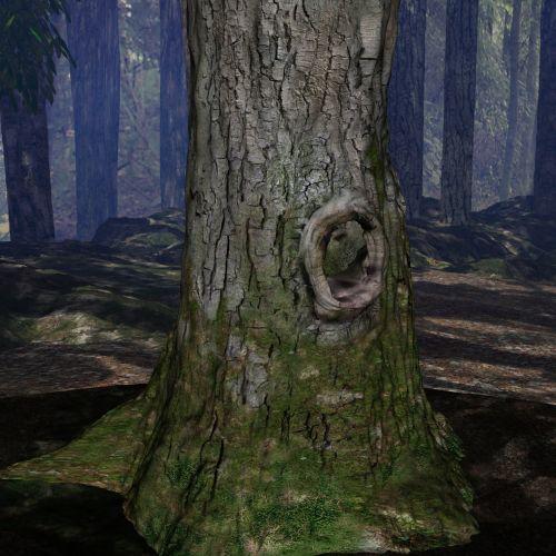 miškas, vasara, vasara & nbsp, mediena, kraštovaizdis, vaizdas, gamta, mediena, medžiai, miškas, miškai, augalai, krūmai, vasaros mediena