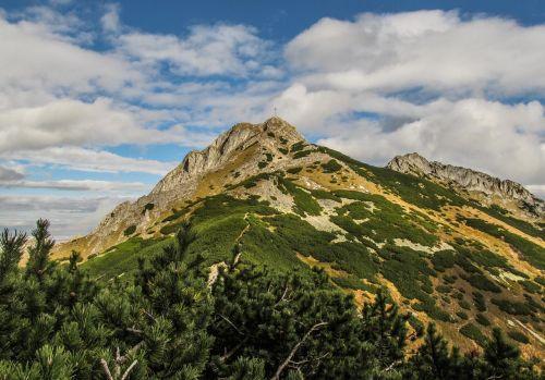 summit mountain top