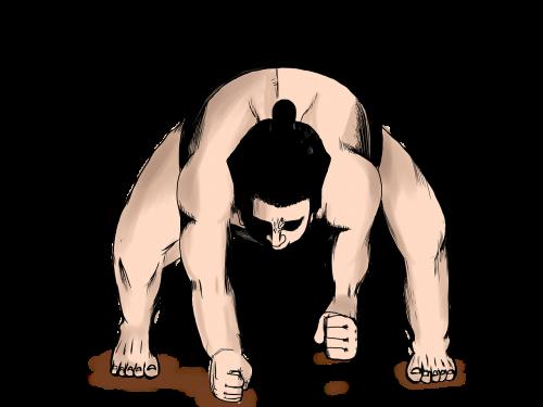 sumo wrestling wrestlers sports