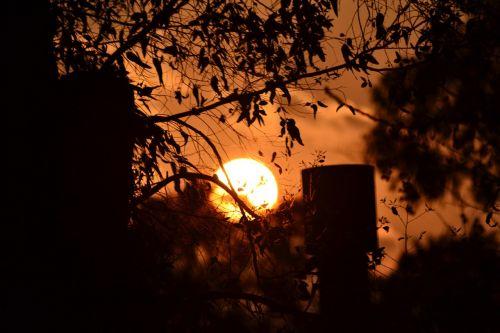 aušra,išėjimas saulė,saulė,Besileidžianti saulė,saulėlydis,oranžinis dangus,siluetai