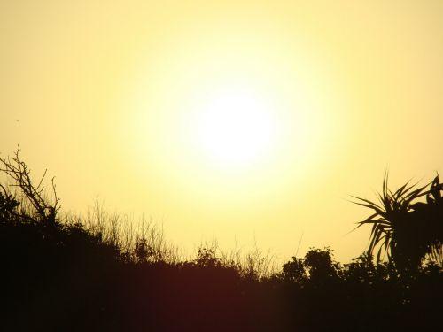 sun sunset yellow