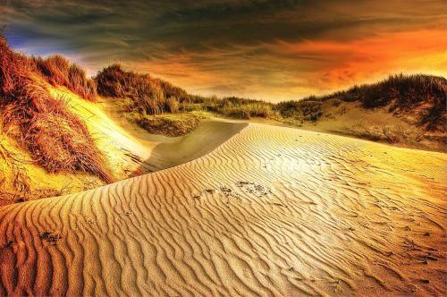 sun dunes sand