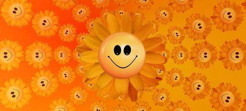 sun  sunflower  joy