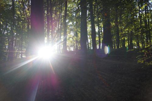 sun sunbeam aperture stain