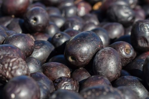 sun-dried olives produce food