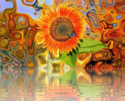 sun flower summer late summer