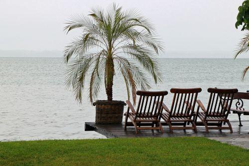 sun loungers chairs seat