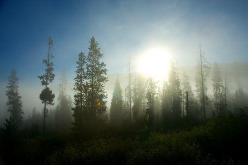 Sun Peaks Through Fog